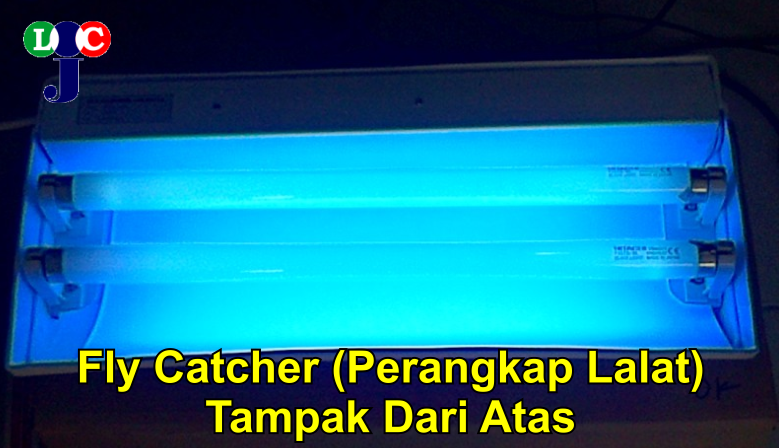 Fly Catcher 2 lampu1